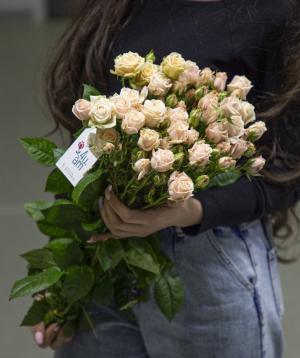 Spray roses «Renton» white