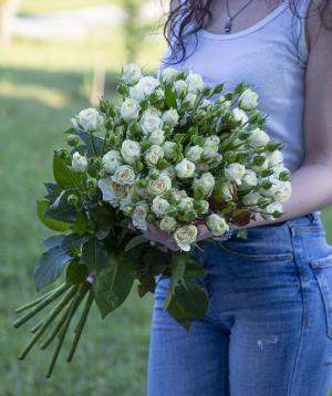 Փնջային վարդեր «Կոլումբիա» սպիտակ