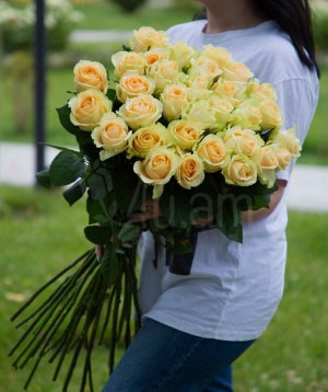 Roses «Peach Avalanche» white 31 pieces