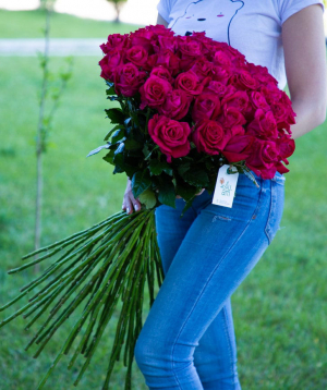 Roses «Fana» dark pink 45 pcs
