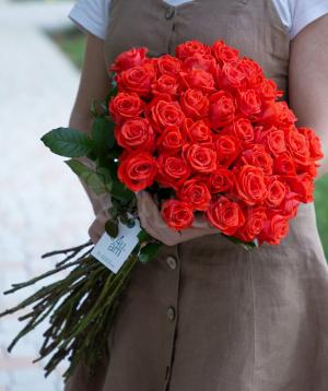 Rose `Oww` coral  45 pcs 60 sm