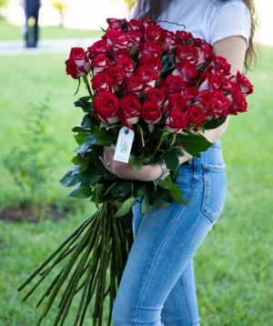 Վարդեր «Luxor» կարմիր 41 հատ