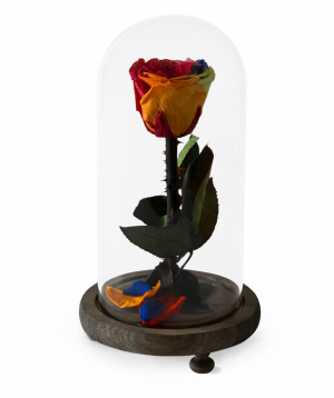 """Rose """"EM Flowers"""" eternal red, blue and yellow 23 cm"""