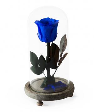 "Rose ""EM Flowers"" eternal dark blue 23 cm"