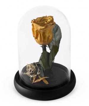 "Rose ""EM Flowers"" eternal gold 17 cm"