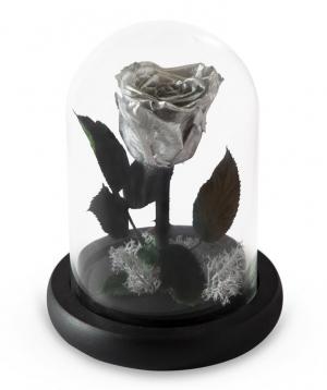 """Rose """"EM Flowers"""" eternal silver 17 cm"""