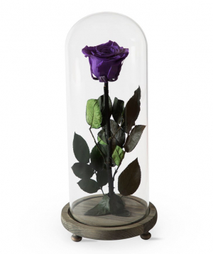 "Rose ""EM Flowers"" eternal purple 33 cm"