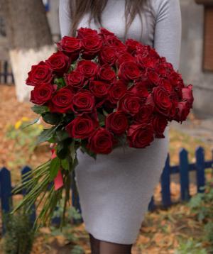 Վարդեր «Բլեք Մեջիք» կարմիր 51 հատ