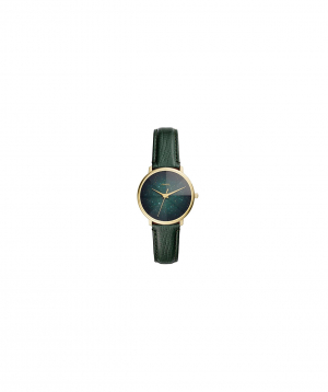 Watches Fossil Group ES4730