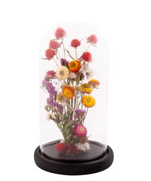 Չորածաղիկներ «EM Flowers» հավերժական 27 սմ կոլբայով