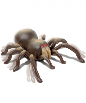 Remote controlled toy `DISCOVERY` solifugae