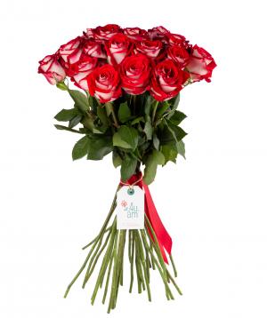 Վարդեր «Luxor» 29 հատ