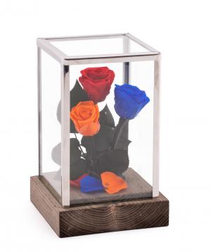 "Roses ""EM Flowers"" eternal tricolor 18 cm in a flask"