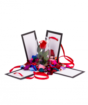 "Rose ""EM Flowers"" red eternal in a box"