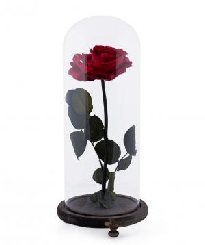 "Rose ""EM Flowers"" eternal red 33 cm"