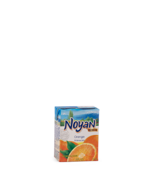 Natural juice `Noyan` Orange 200 ml