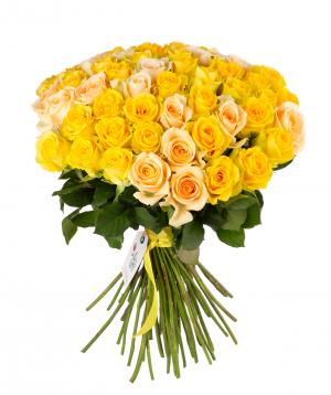 Roses `Penny Lane & Peach Avalance` mix 75 штук