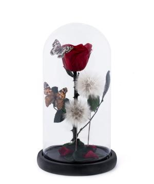 Վարդ «EM Flowers» հավերժական կարմիր 27 սմ թիթեռներով
