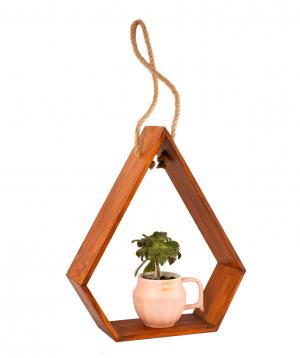 Կոմպոզիցիա «Eco Garden» սուկուլենտով №3