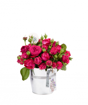Composition `Sosem` with peony roses