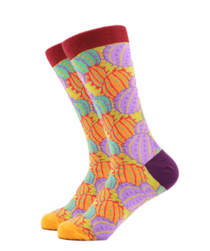 Գուլպաներ «Zeal Socks» կակտուսներ