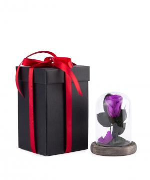 "Rose ""EM Flowers"" eternal 12 cm dark purple"