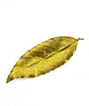 "Brooch ""CopperRight"" laurel leaf"