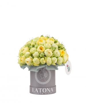 Composition `Pandora` with peony roses