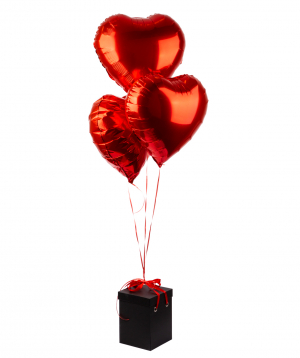 """Arrangement """"EM Flowers"""" Valentine with an eternal rose and balloons"""