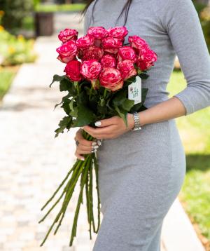 Roses `Baracuda` pink 15 pcs