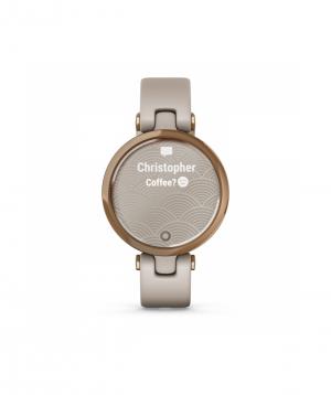 Ժամացույց «Garmin» ձեռքի 010-02384-11