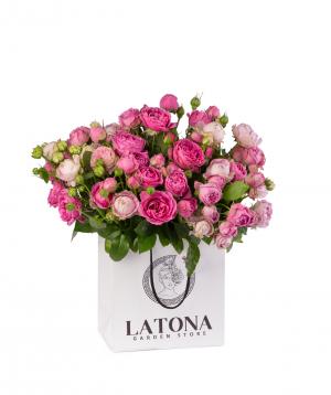 Կոմպոզիցիա «Dior» պիոն վարդերով