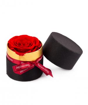 Rose `EM Flowers` red eternal in a box