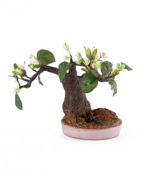 """Bonsai """"Eco Garden"""" handmade, artificial №1"""