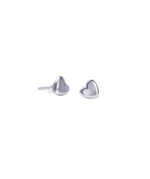 Արծաթյա ականջօղեր SE256W