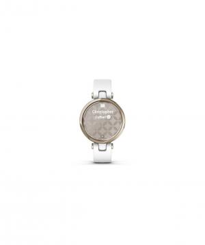 Ժամացույց «Garmin» ձեռքի 010-02384-10
