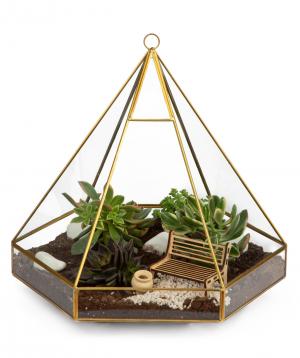 Florarium 'Pyramid'' with succelents