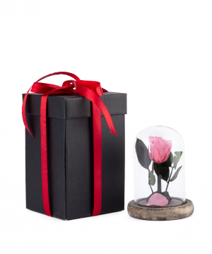 "Rose ""EM Flowers"" eternal 12 cm pink"