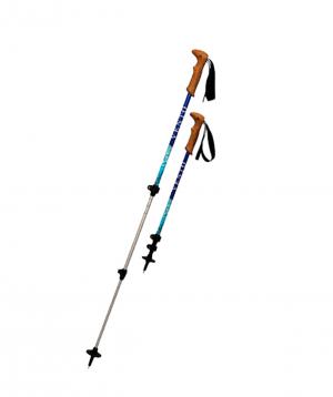 "Pole ""Camp.am"" trekking №1"