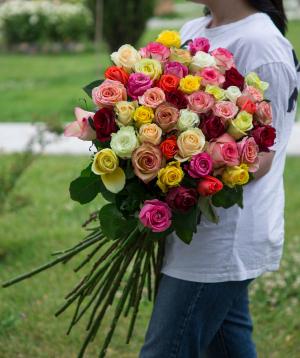Վարդեր գույնզգույն 51 հատ