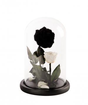 "Rose ""EM Flowers"" eternal, Beauty and the Beast N2"