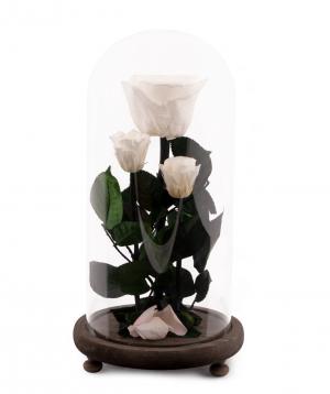 "Roses ""EM Flowers"" eternal white 28 cm in a flask"