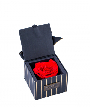 "Rose ""EM Flowers"" eternal, in a box"