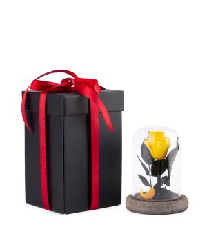 """Rose """"EM Flowers"""" eternal 12 cm yellow"""