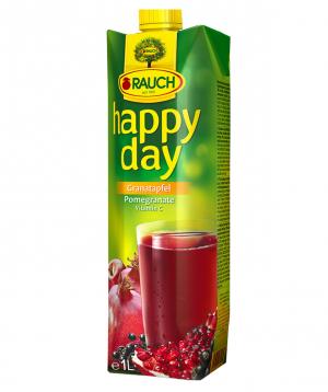 Juice `Happy Day` berry 1 liter