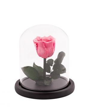 "Rose ""EM Flowers"" eternal pink 17 cm in a flask"