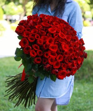 Վարդեր  «Red Naomi»  կարմիր