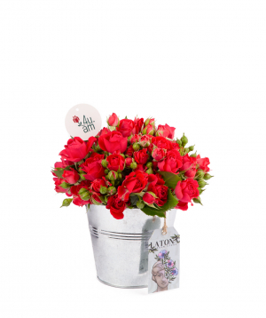 Composition `Rusiana` with spray roses