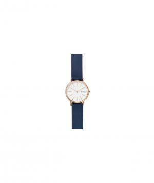 Wristwatch `SKAGEN` SKW2838