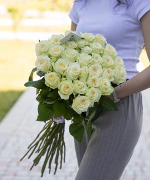 Roses «Dolomiti»  white 29 pcs